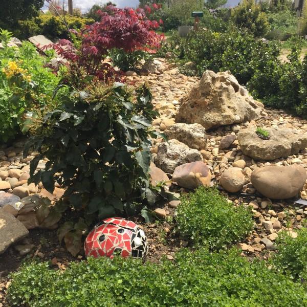 Mariquita para el jardín